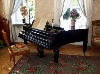What's wrong with this picture?  Never put water, flower vases or candles on your piano!  It's just asking for disaster!  Charles Flaum does insurance appraisals for fine instruments.